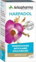 ARKOGELULES HARPAGOPHYTON Gélules Fl/150 à Chinon