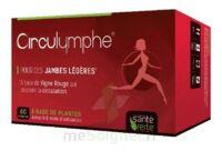 Santé Verte Circulymphe Triple Actions B/30 à Chinon