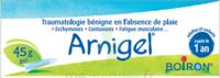 Boiron Arnigel Gel T/45g à Chinon